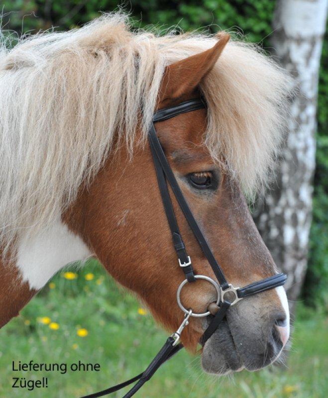 HKM Reittrense für Islandpferde