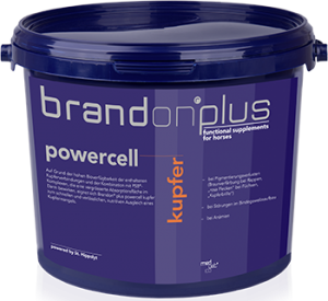 St Hippolyt Brandon plus powercell kupfer 3 kg