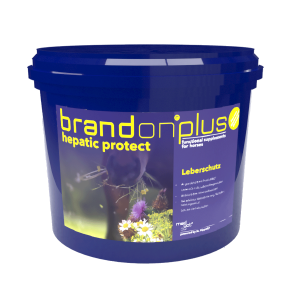 St Hippolyt Brandon plus hepatic protect 3 kg