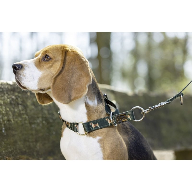 HKM Hundehalsband -Beagle-